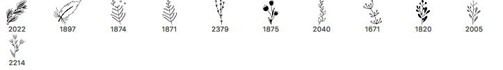 手绘涂鸦小清新树枝花纹图案PS笔刷素材下载