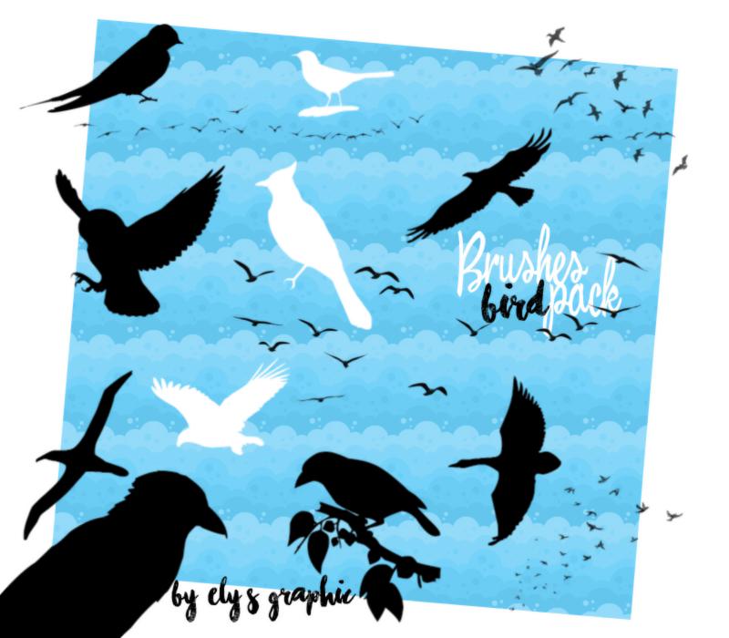 飞鸟、鸟群剪影图形PS笔刷素材下载 鸟群笔刷 鸟笔刷 飞鸟笔刷 剪影笔刷  %e5%8d%a1%e9%80%9a%e7%ac%94%e5%88%b7
