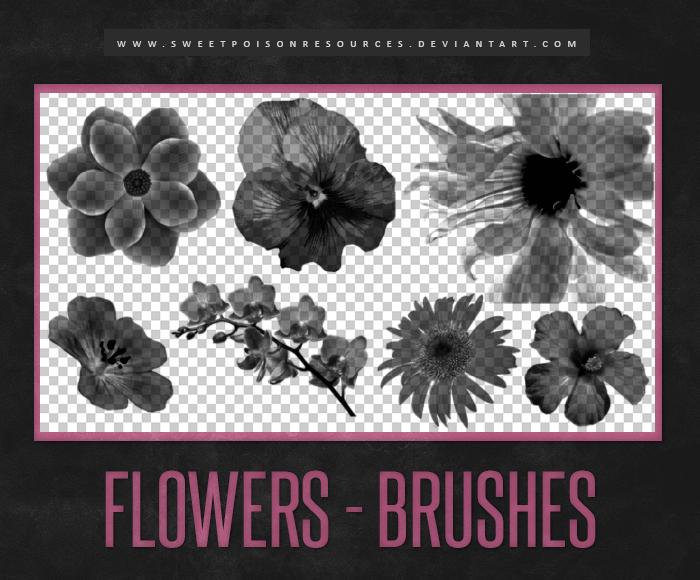 真实的鲜花、花朵造影图案Photoshop笔刷素材下载