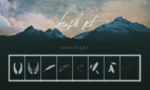 羽毛、飘落的羽毛效果、翅膀、天使羽翼Photoshop笔刷素材下载