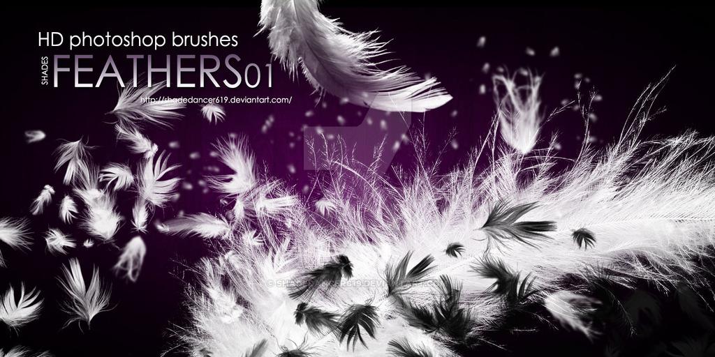 20种羽毛、羽毛飘落、飘散效果Photoshop笔刷素材下载