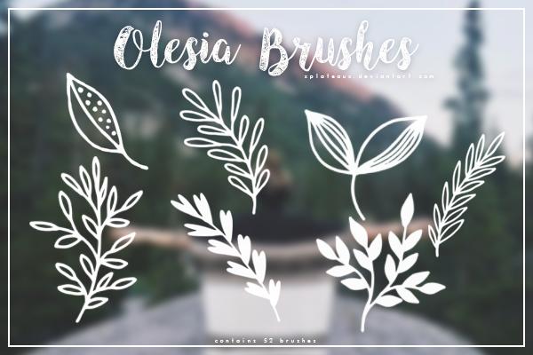 手绘线条植物叶子图案Photoshop笔刷素材下载