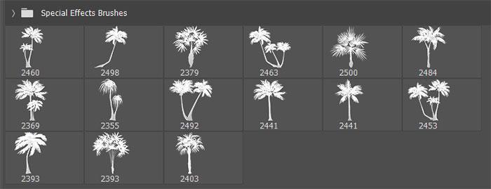 15种海边椰子树、棕榈树PS笔刷素材下载