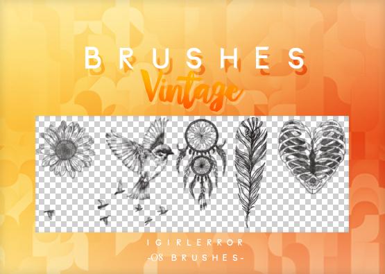 向日葵、蜂鸟、羽毛挂饰、非主流心形图案等Photoshop装饰图案笔刷