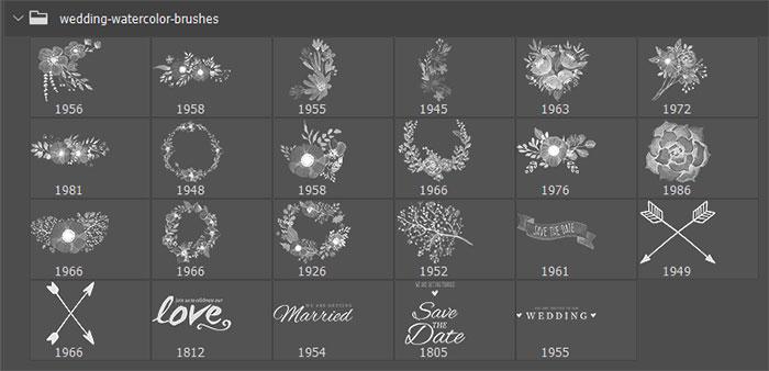 23种盛开的鲜花图案Photoshop花朵笔刷素材下载