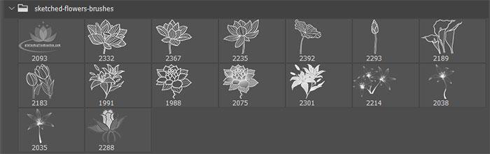 16种荷花图案、莲花花纹印花PS笔刷素材下载