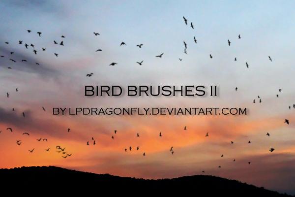 天空飞翔的鸟群剪影图像PS笔刷素材下载 鸟群笔刷 鸟笔刷  %e5%8a%a8%e7%89%a9%e7%ac%94%e5%88%b7