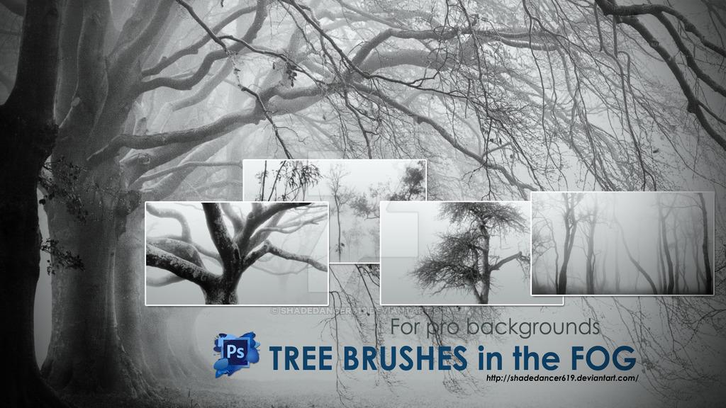 24枯树、大树剪影图形、树木光影Photoshop笔刷下载
