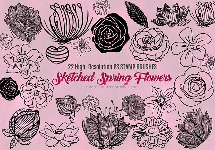 22种漂亮的手绘鲜花花朵图案、春季鲜花花纹Photoshop笔刷下载