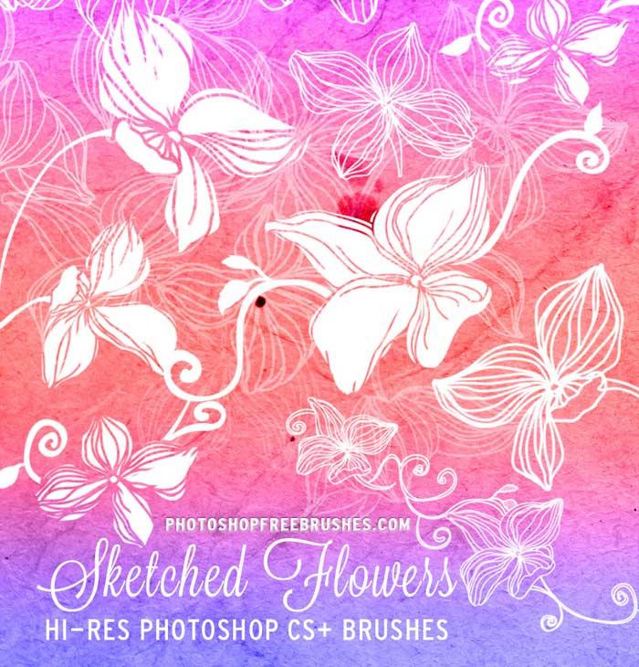 20种免费的手绘鲜花花朵图案Photoshop花纹笔刷下载 花纹笔刷 花朵笔刷 手绘花纹笔刷  flowers brushes