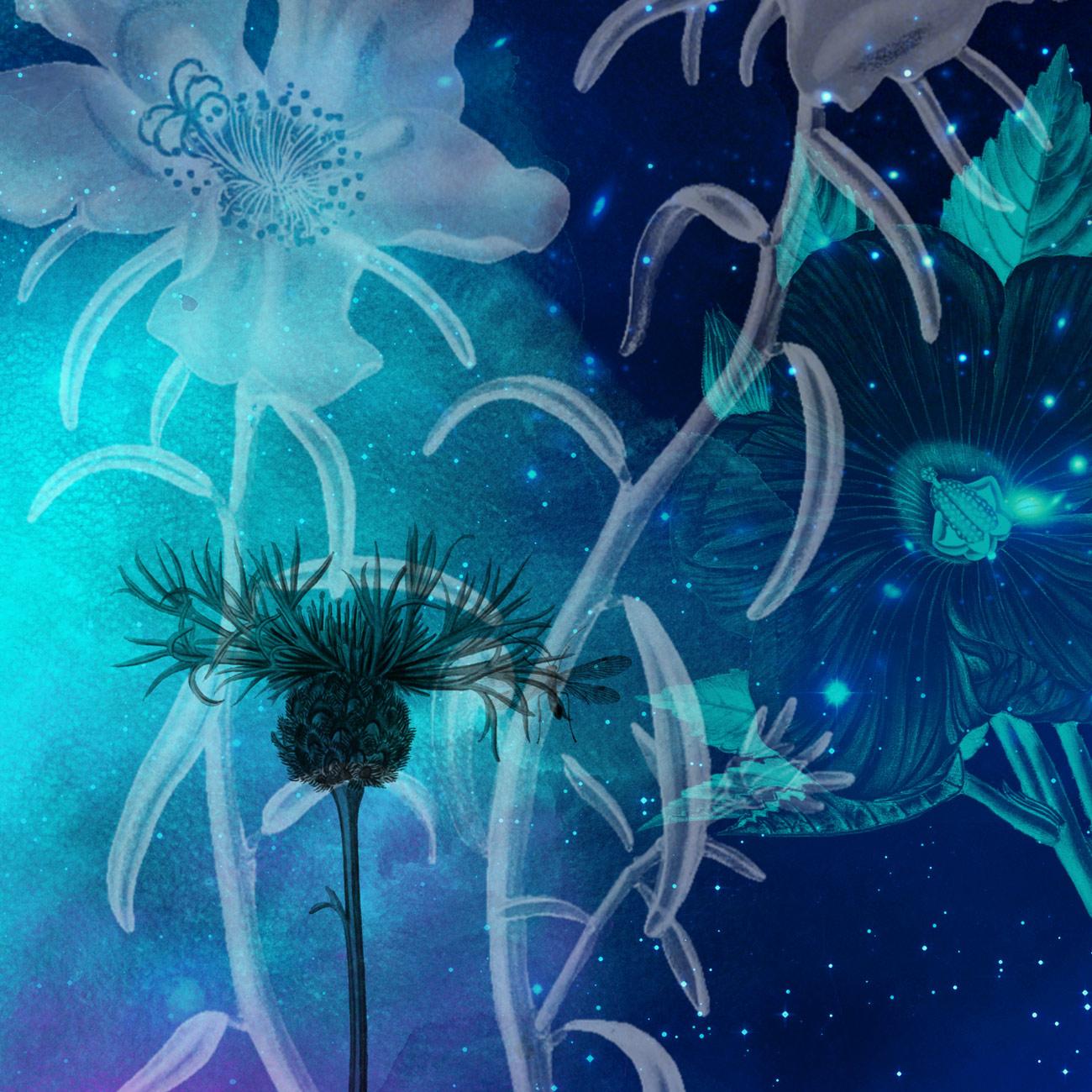 17种复古式植物鲜花花朵图案Photoshop笔刷素材下载