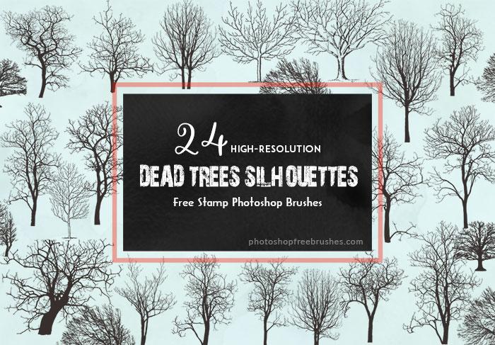 24种冬天干枯的大树、树木剪影造影图形Photoshop大树笔刷下载
