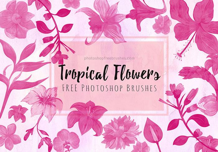 夏日主题的花卉图案、盛开的鲜花花朵Photoshop笔刷下载