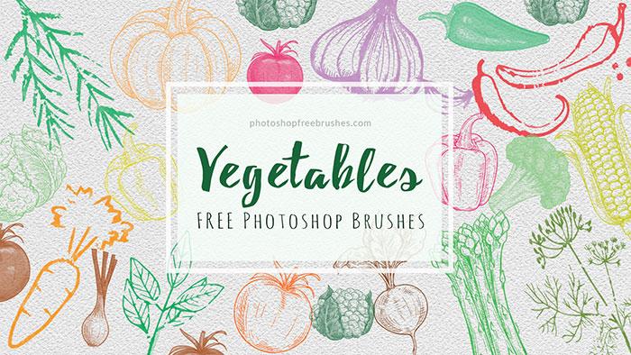 21种免费的手绘蔬菜图案玉米、辣椒、洋葱、南瓜、花椰菜、萝卜番茄等图形PS笔刷