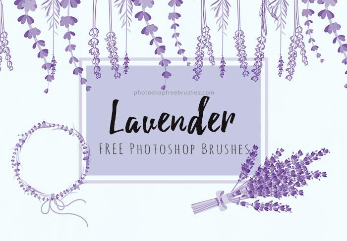 14种薰衣草花圈、花束造型Photoshop笔刷素材下载