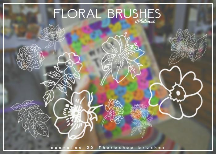 线框式花朵、盛开的鲜花图案Photoshop花朵图案笔刷