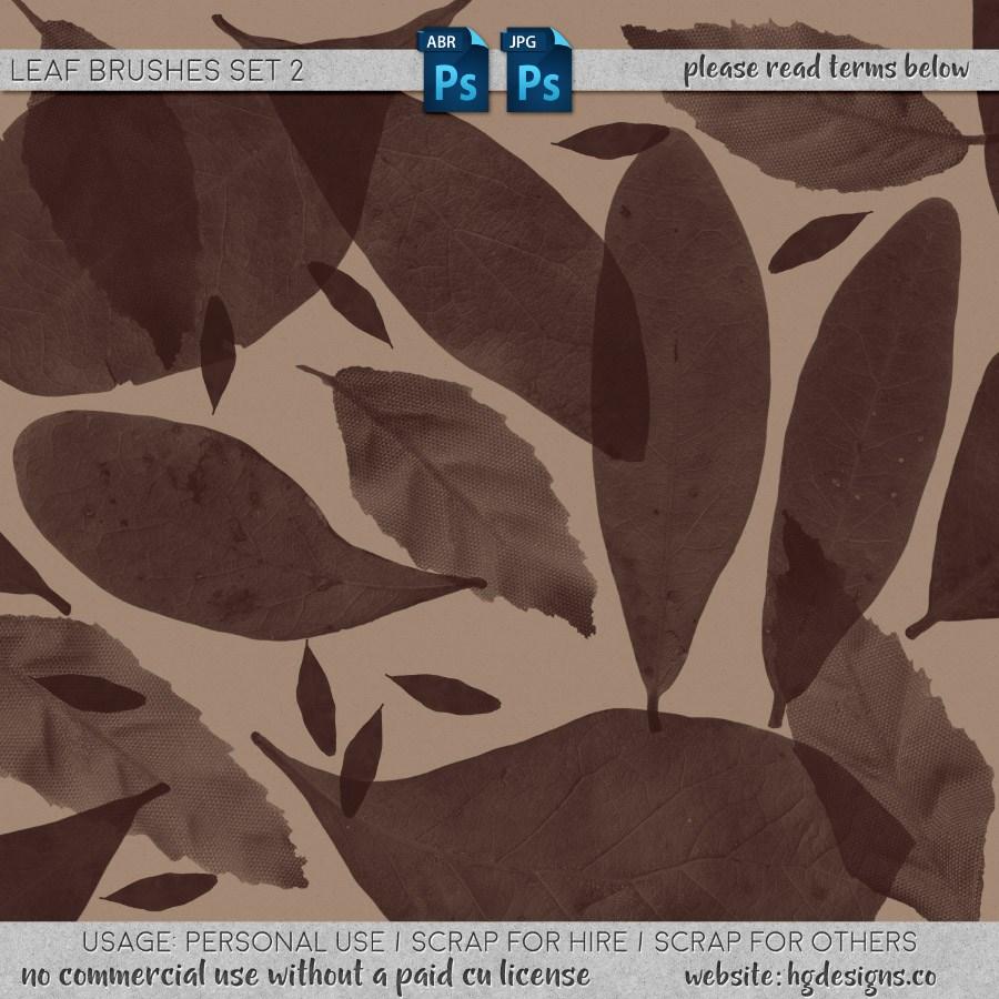 免费的树叶、叶子剪影、叶片标本图形PS笔刷素材下载