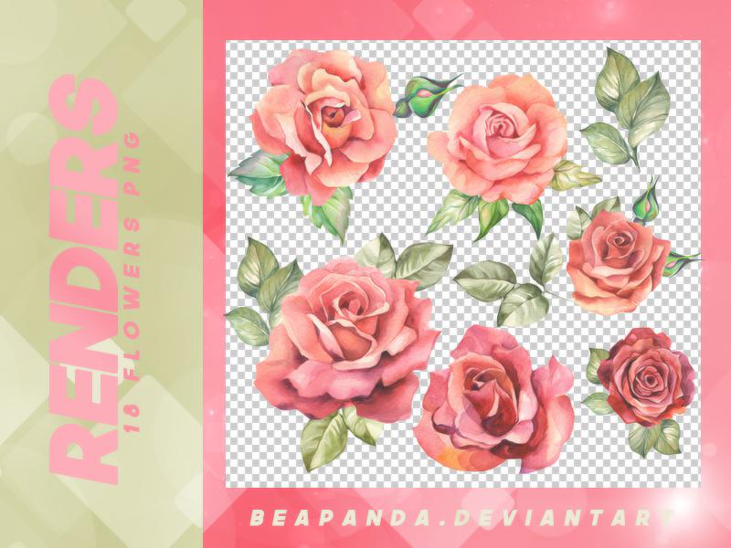 8种水彩鲜花图案装扮韩国笔刷(PNG透明格式)