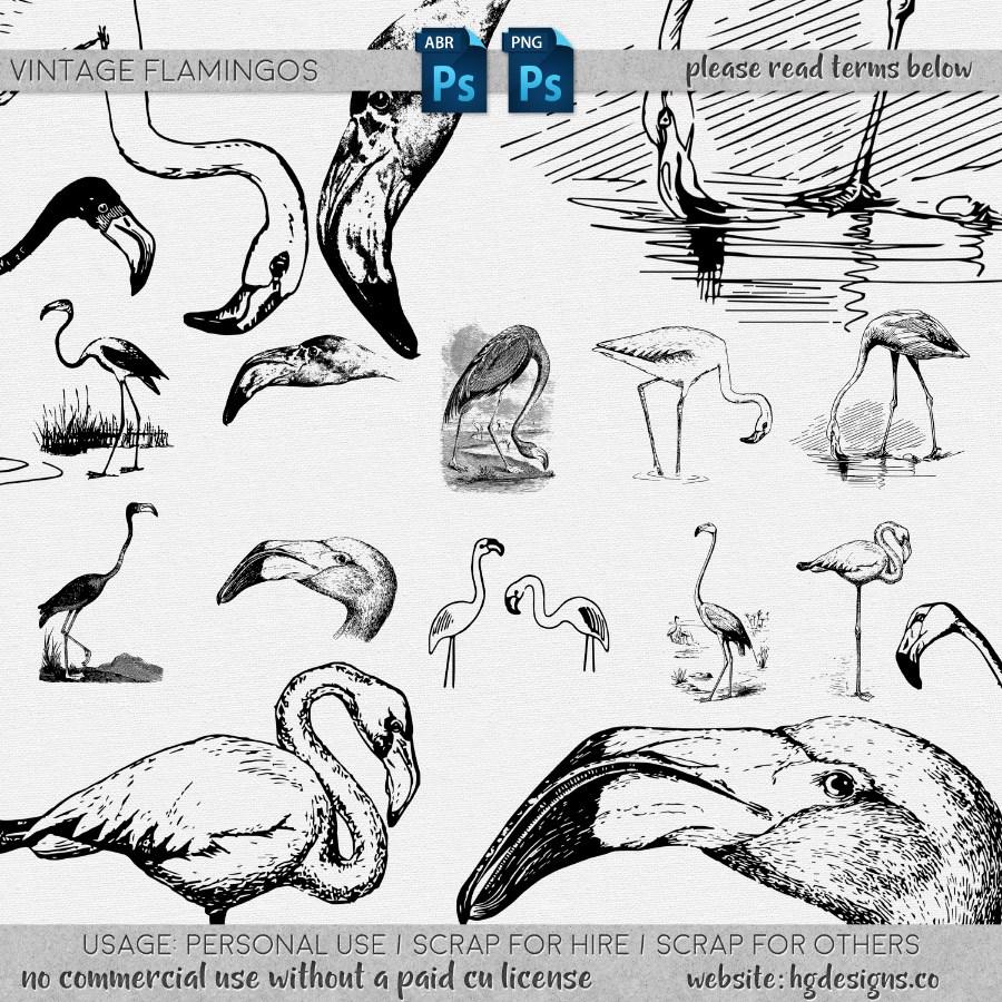 火烈鸟版刻图案、手绘火烈鸟图形PS笔刷下载