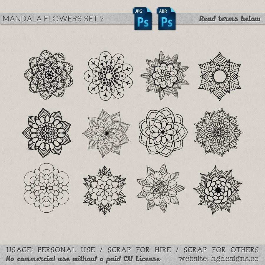 漂亮精美的手绘鲜花花朵图案装饰PS笔刷下载