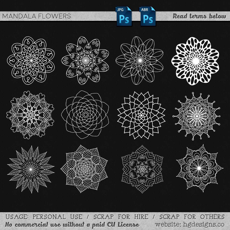 漂亮手绘盛开的鲜花花朵图案PS笔刷下载