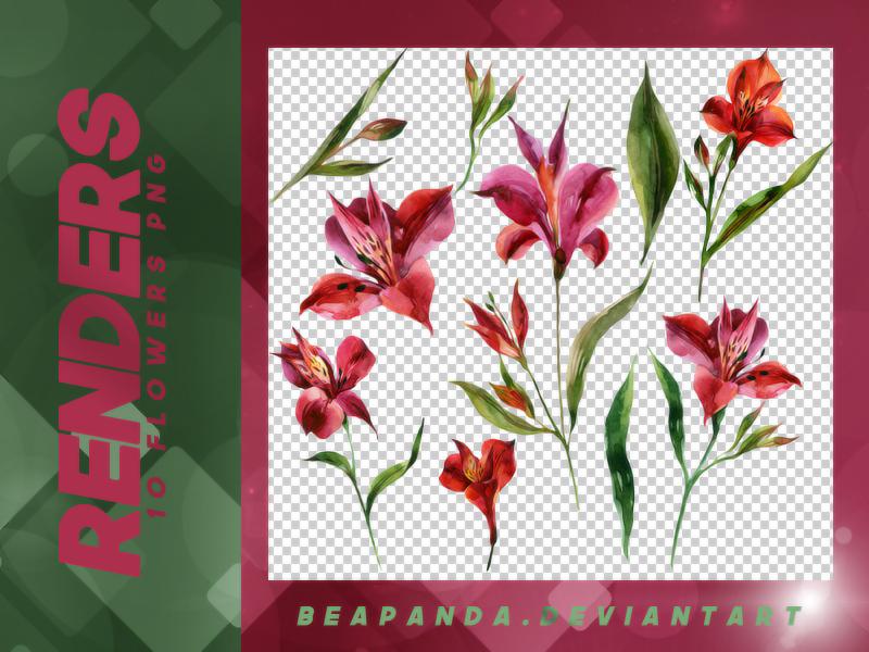 漂亮的水彩鲜花图案PS笔刷素材下载(PNG免扣图透明格式)