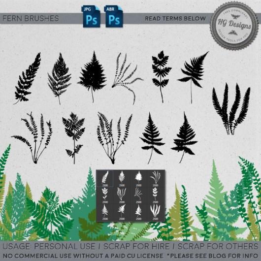 蕨类植物叶子图案Photoshop笔刷下载