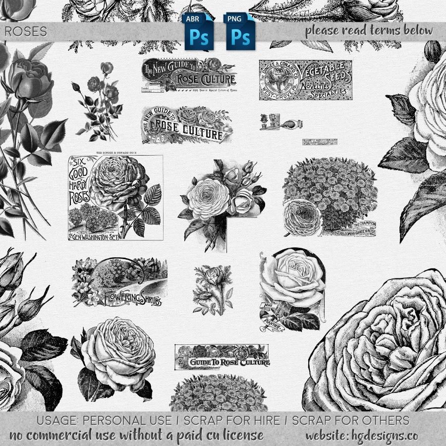 复古式手绘花朵、艳丽盛开的鲜花图案Photoshop花朵笔刷