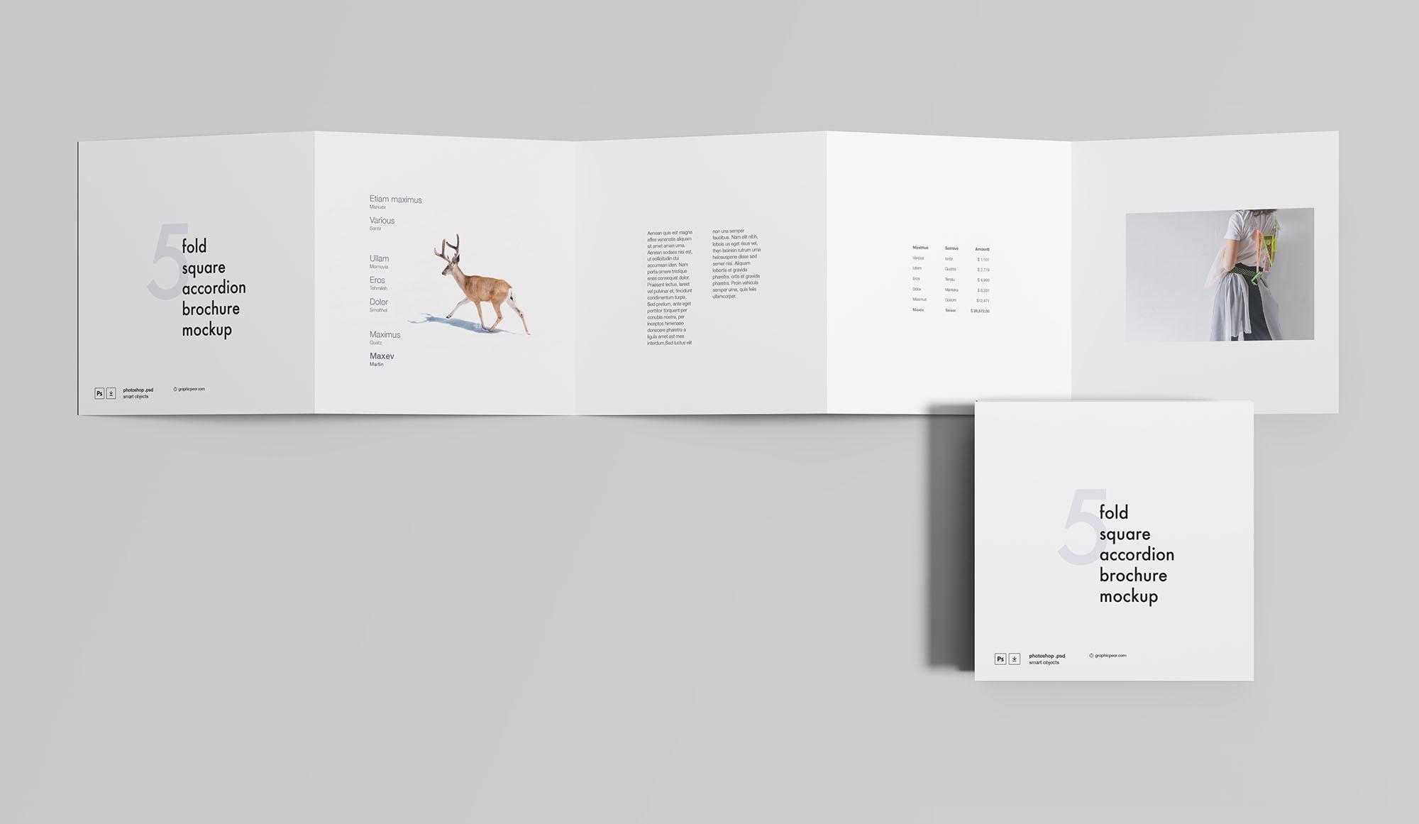 五折页宣传广告模板 - PSD源文件素材下载