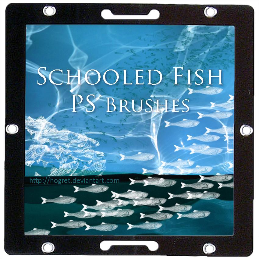 鱼群图案PS笔刷下载
