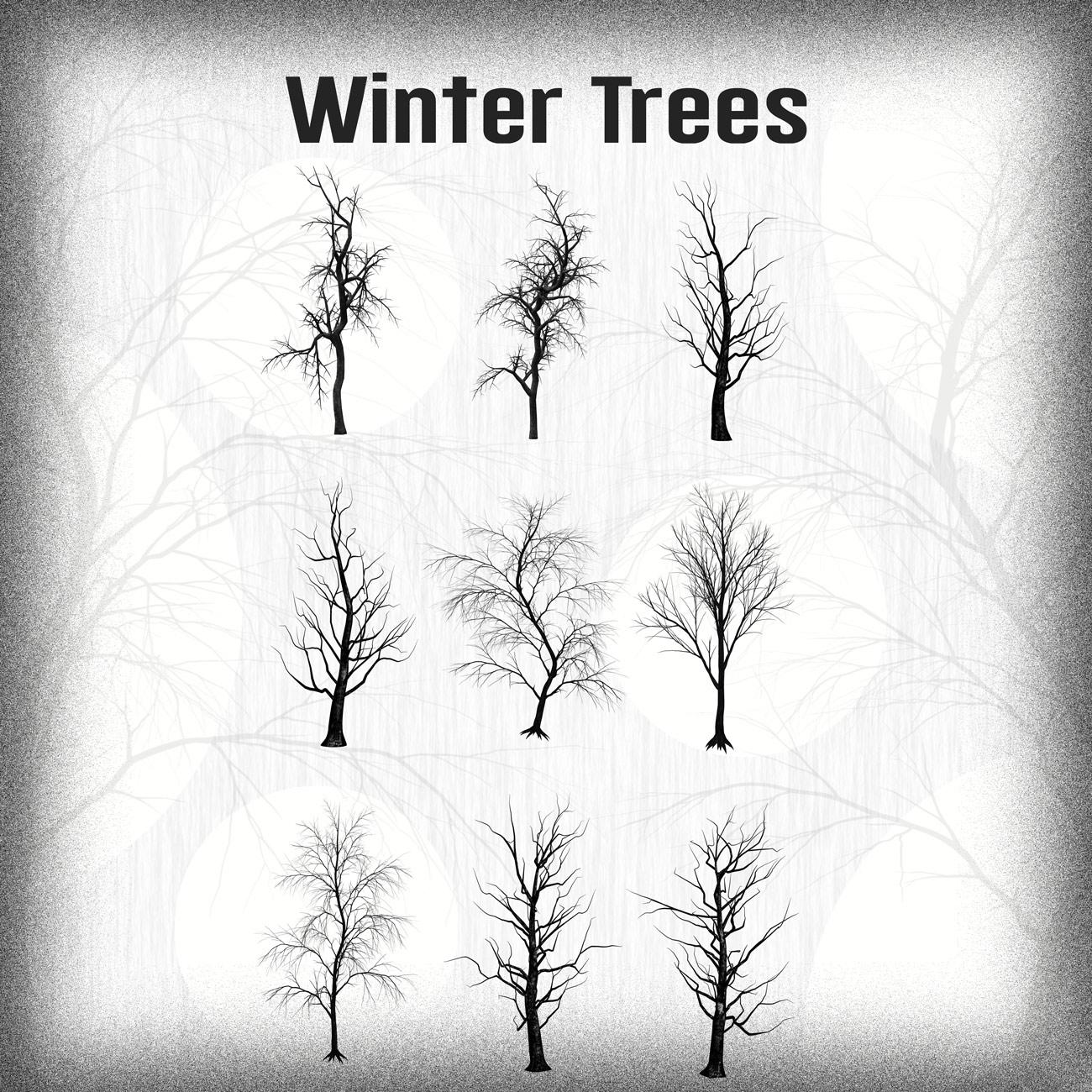 9种树枝、干枯的大树、冬天的树木PS笔刷下载