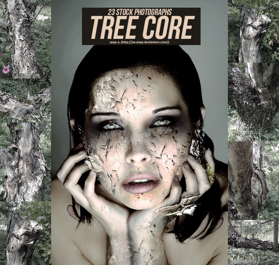 23种树皮、枯树纹理效果Photoshop背景素材笔刷(JPG图片格式)