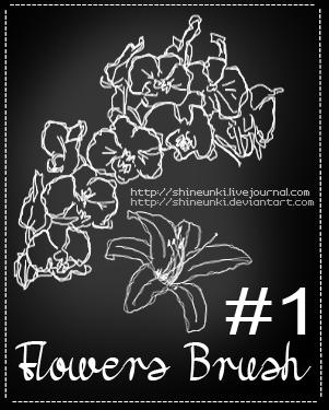 手绘素描风格的花朵线框图形PS笔刷印花笔刷