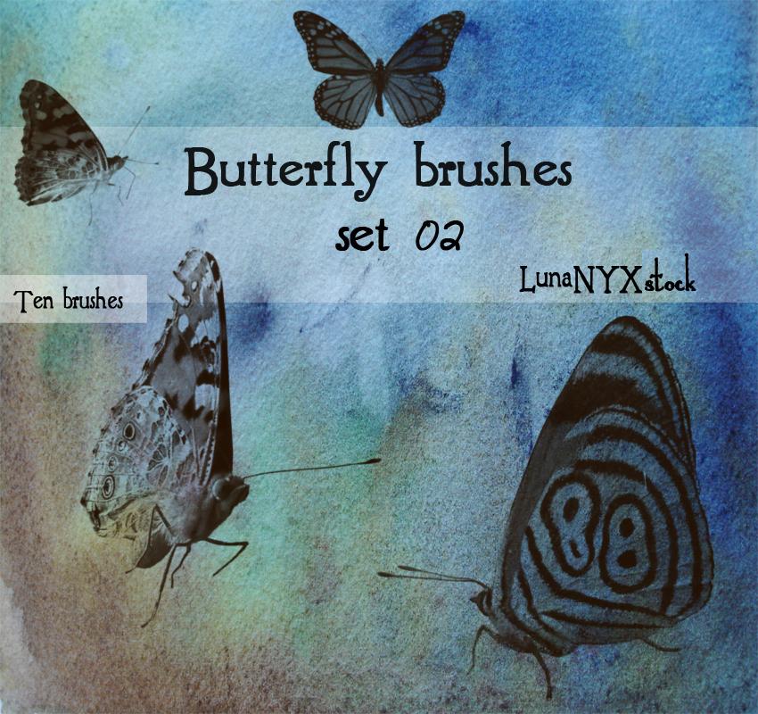 飞蛾、蝴蝶昆虫标本Photoshop笔刷下载