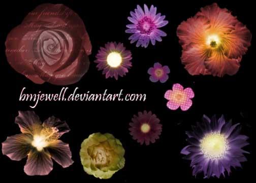 真实的鲜花花朵图案PS笔刷素材