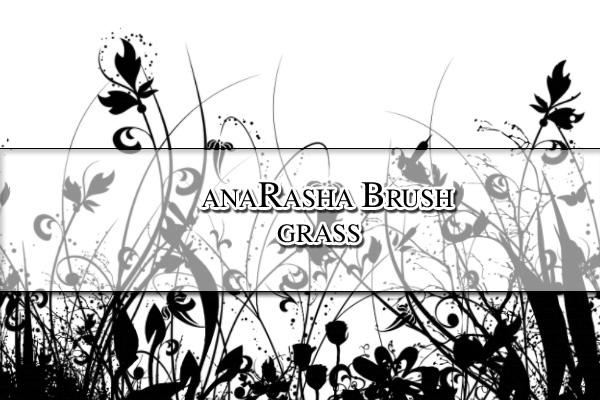 漂亮优雅的植物花纹、印花图案PS笔刷素材下载