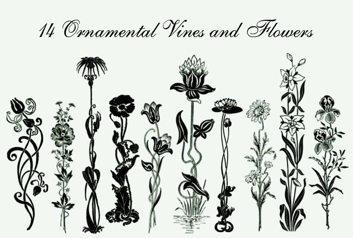 14种手绘鲜花花朵图案装饰PS笔刷素材