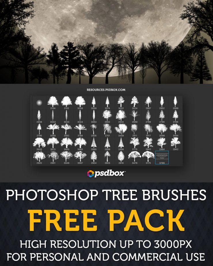 大树、原始森林树木剪影造型图案PS笔刷素材