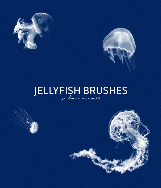 海洋中的水母造型PS笔刷下载