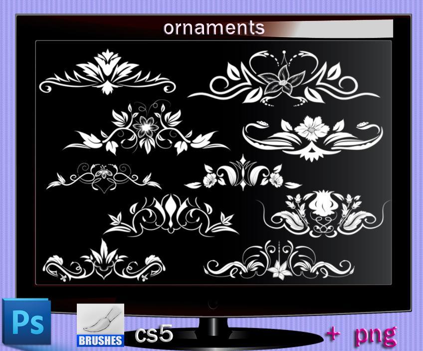 皇冠式植物印花图案饰品PS笔刷下载