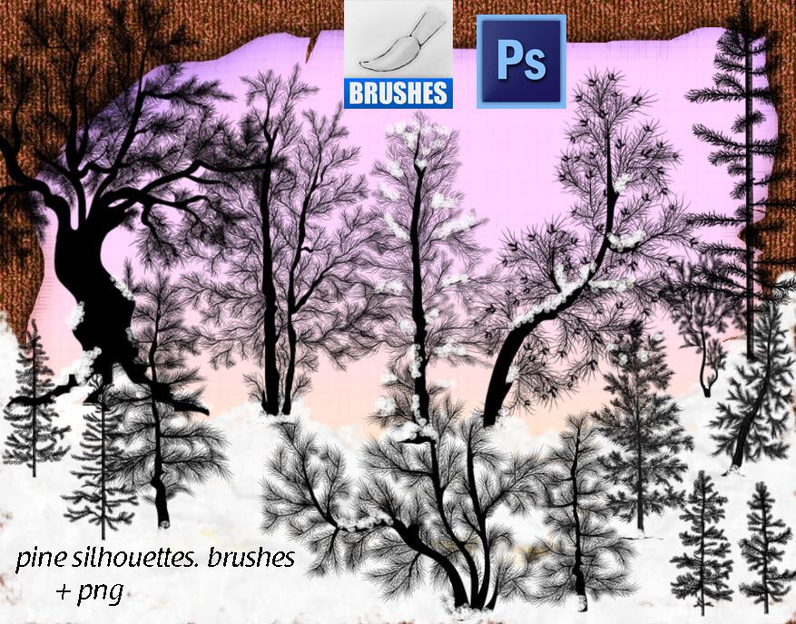 冬天的松针树、针叶林树木PS大树笔刷下载