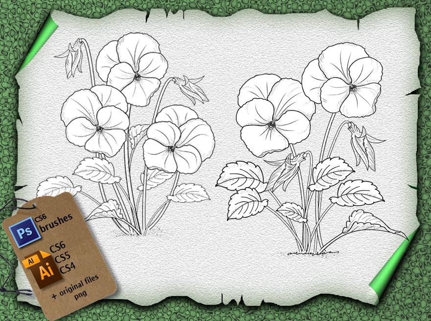 漂亮的三色堇鲜花花纹图案PS笔刷素材(含Ai矢量文件)