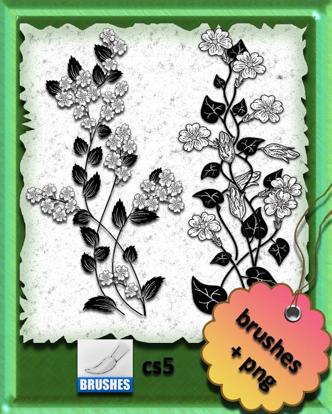 漂亮的手绘野草野花花纹图案PS笔刷素材