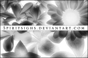 鲜花花朵图案Photoshop笔刷免费下载