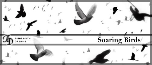 飞鸟、鸟群效果PS笔刷下载
