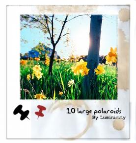 10种不同效果的拍立得相片边框PS笔刷素材下载