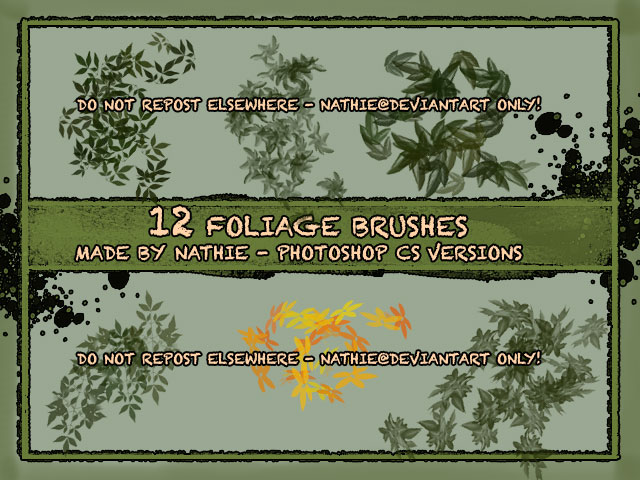 12种春天的树叶、叶子效果PS笔刷下载