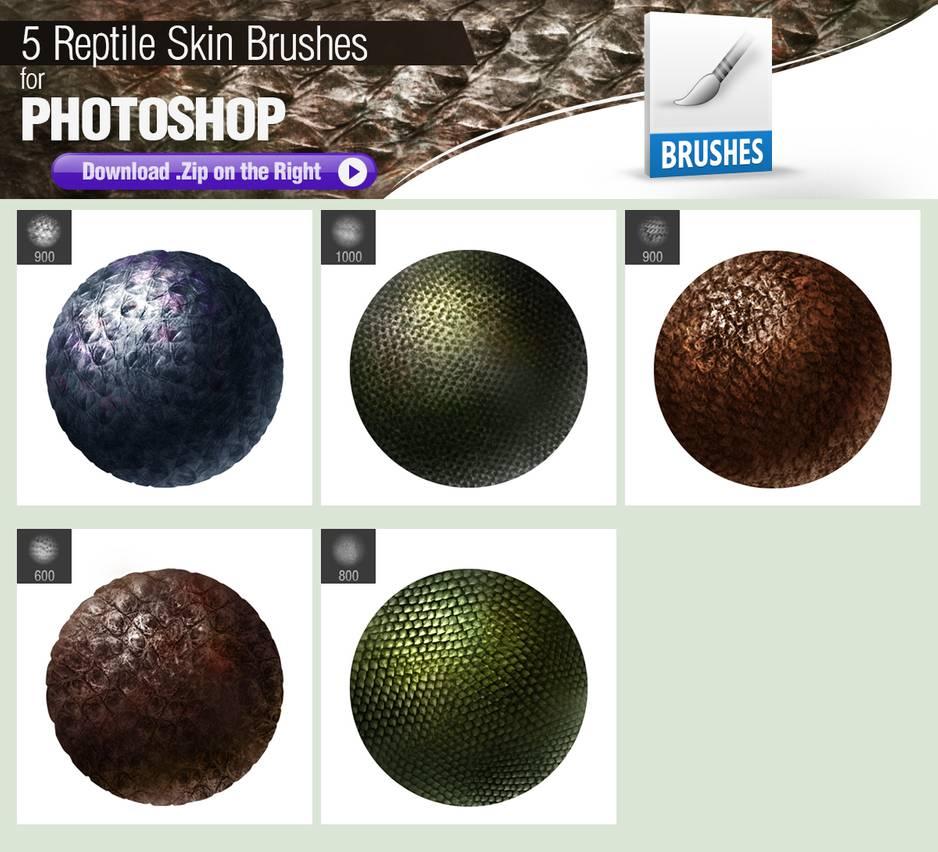 5种像素着色的爬行动物皮肤纹理材质PS笔刷下载