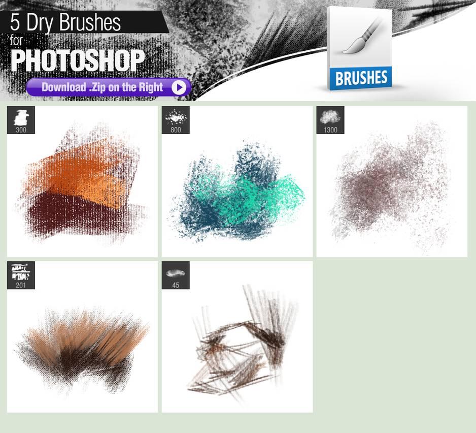 5种油漆刷子、模仿涂有颜料的海绵、干海绵、素描绘画等PS笔刷素材
