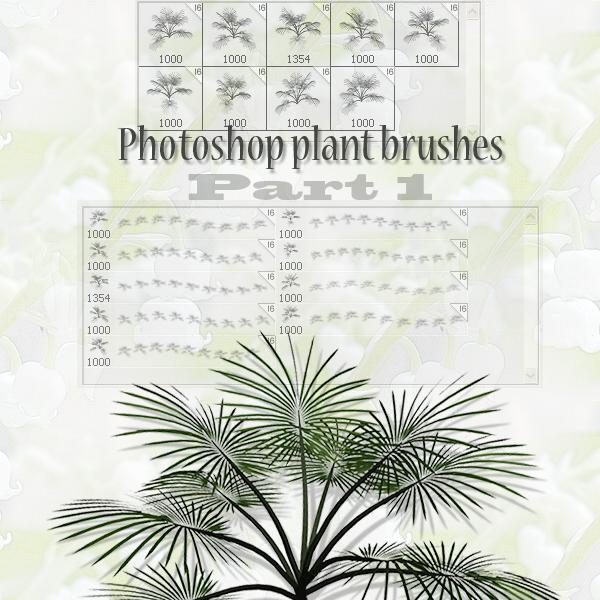 photoshop植物松针叶笔刷素材